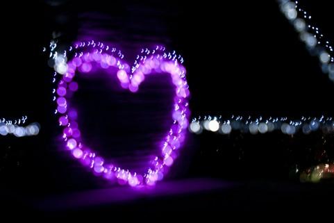 モテとは、愛とは一体何なのか!「ぼくは愛を証明しようと思う。」レビュー